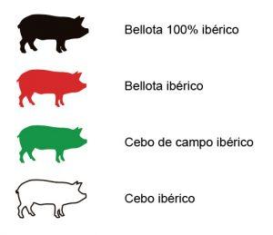 Descubre en Barcelona los precintos del Jamón Ibérico