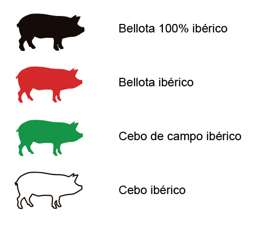 Seals discovered in Barcelona Iberian Ham